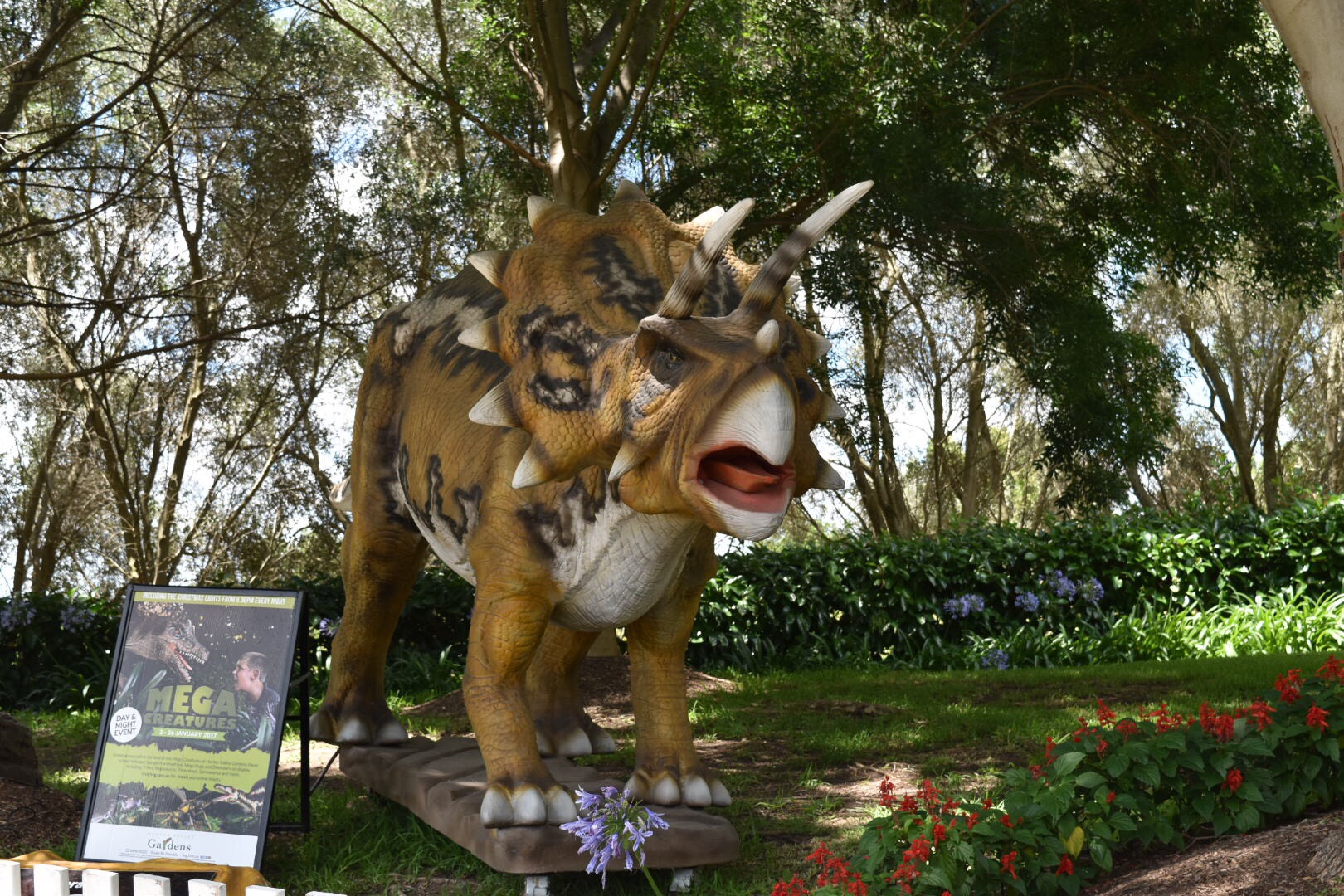 Review of Mega Creatures Event at Hunter Valley Gardens